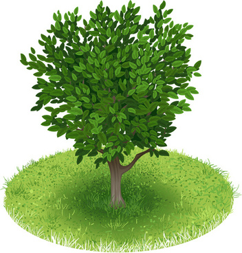 spring green tree design vector graphic