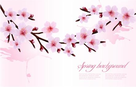 spring pink flower vector background graphics