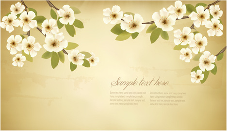 spring white flowers with vintage background