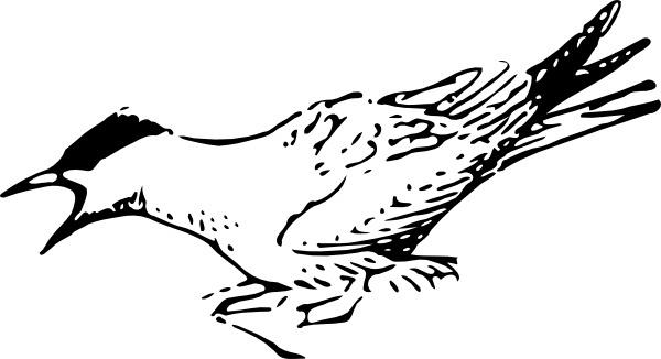 Squeeking Bird clip art