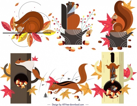 squirrel animal icons collection funny design colorful decor