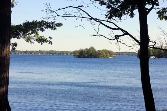 st lawrence through the trees at wellesley island state park new york