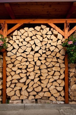 stack of wood for winter