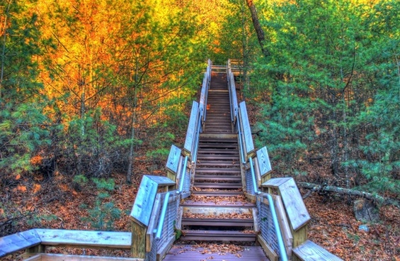 staircase to the top at roche a cri state park