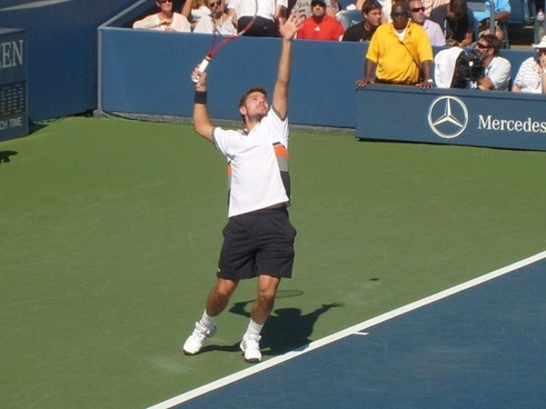 stanislas wawrinka star player
