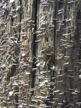 staples in a pole