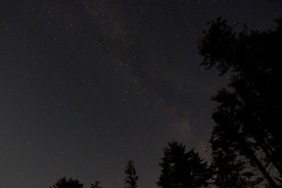stars night trees sky milky way