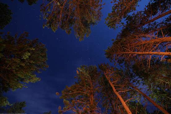 stars over a campfire light with a full moon in rmnp