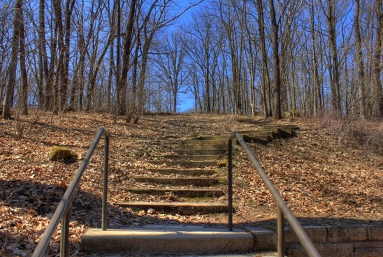steps up at maquoketa caves state park iowa