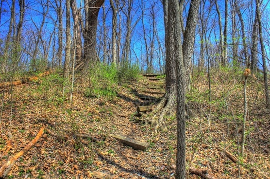 steps up the hiking trail at sangchris lake state park illinois