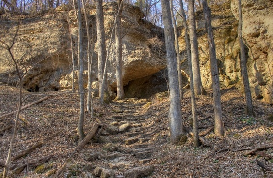 steps up the hill at backbone state park iowa
