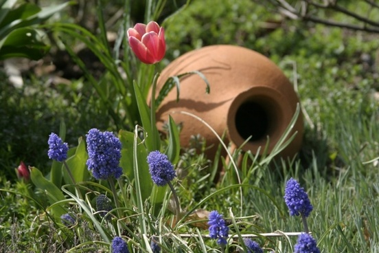 still life object garden
