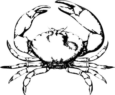 Stone Crab clip art