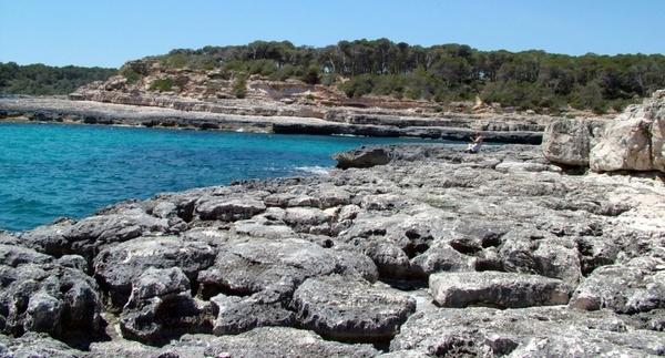 stones and beach