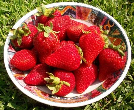 strawberries bowl fruit