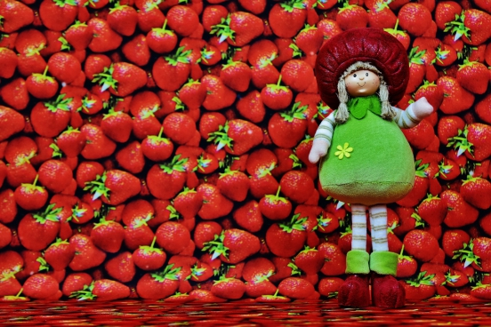 cute fabric doll and red strawberries decoration