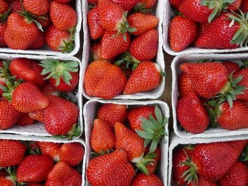 strawberries fruit red