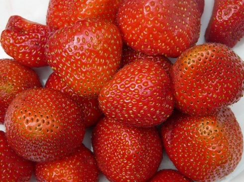 strawberries fruity red