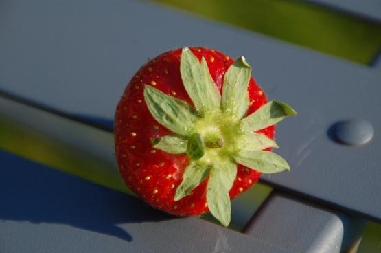 strawberry fruit flavor