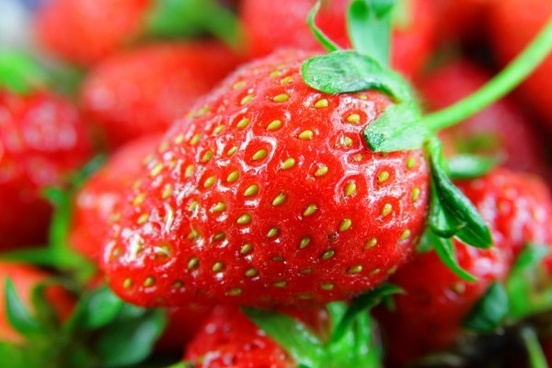 strawberry hd picture 9
