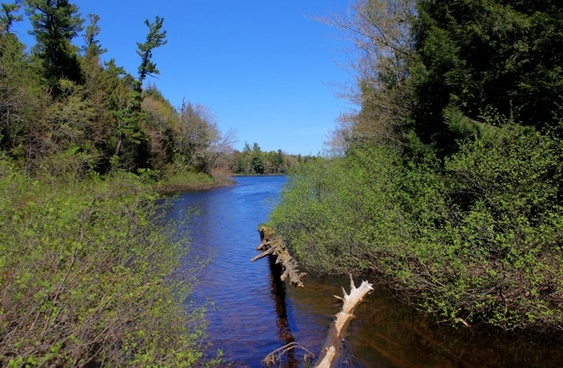 stream flowing into superior at porcupine mountains state park michigan