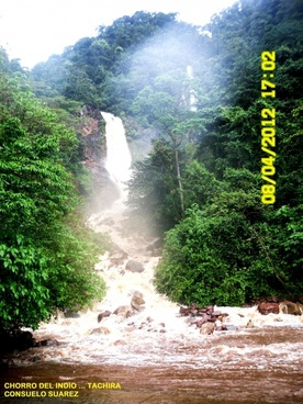 stream the indian national park