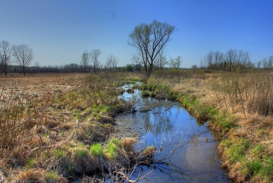 stream though the landscape at kettle moraine south wisconsin