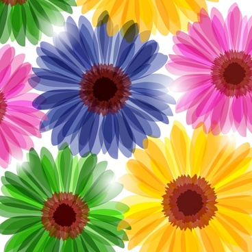 petals background bright colorful flat blurred decor
