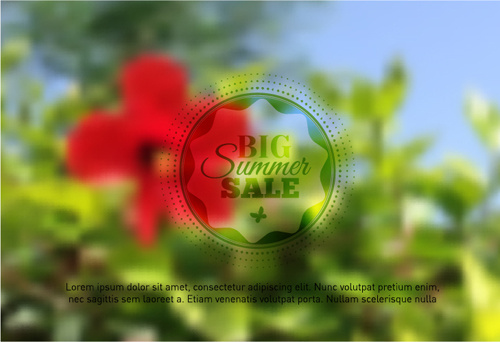 summer flower with blurred background vector