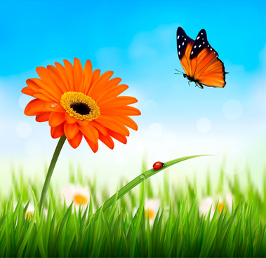 summer grass with flower and butterfly background vector
