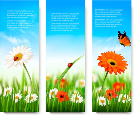 summer grass with flower vector banners