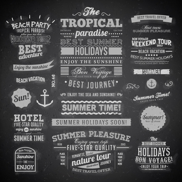 summer holidays label ornaments and logos vector
