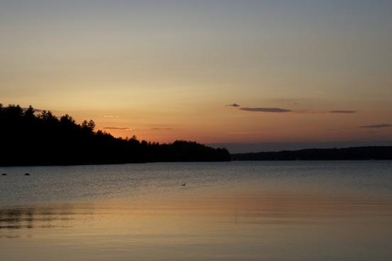 summer lake trees sunset water