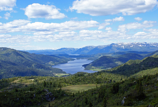 summer landscape telemark