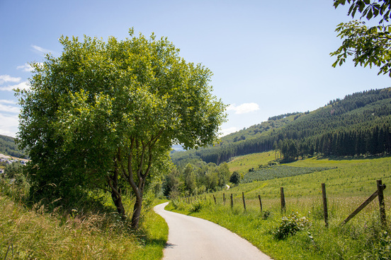 summer walk landscape