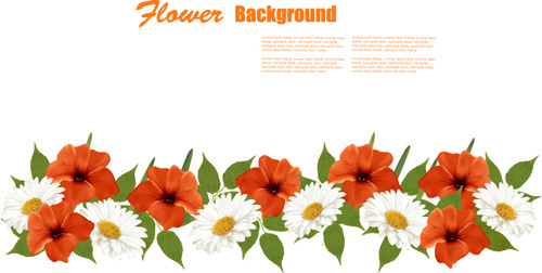 Summer White And Orange Flowers Background Vector