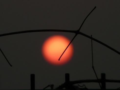 sun red setting