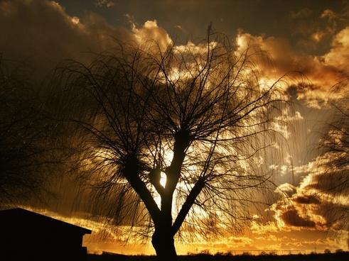 sun see setting