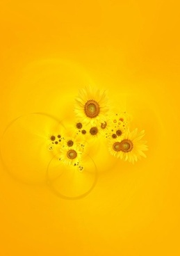 sunflower background image 7