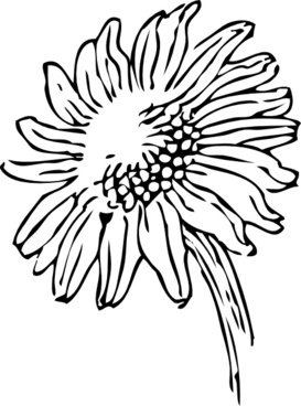 Sunflower Outline Free Vector Download 9 551 Free Vector For Commercial Use Format Ai Eps Cdr Svg Vector Illustration Graphic Art Design Sort By Relevant First Download this premium vector about sunflower icons set, outline style, and discover more than 10 million professional graphic resources on freepik. ai eps cdr svg vector illustration