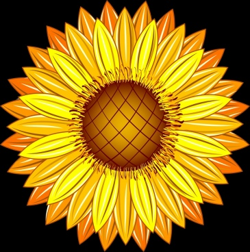 sunflower icon closeup design shiny yellow decoration