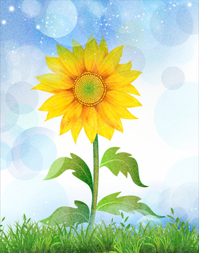 sunflower in green grass and blue sky