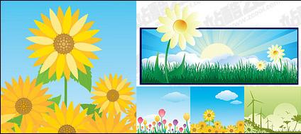 Sunflower sunrise windmill