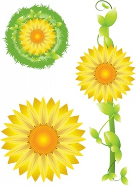 sunflower icons bright colorful modern design
