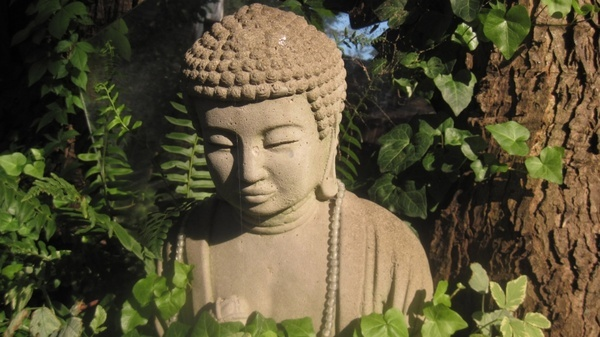 Images Hi Images Shayari Laughing Buddha Statue Hd Image: Buddha Photos Free Stock Photos Download (94 Free Stock