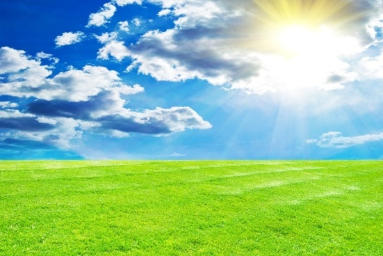 sunny lawn hd picture