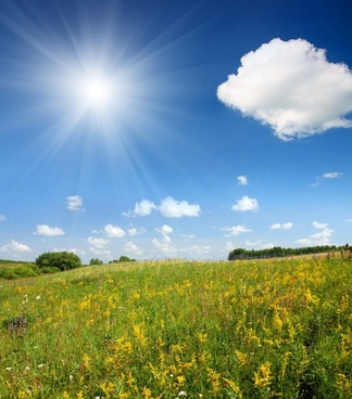 sunny outskirts of scenery definition picture