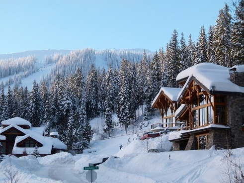 sunny winter snow