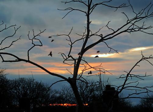 sunrise winter solstice