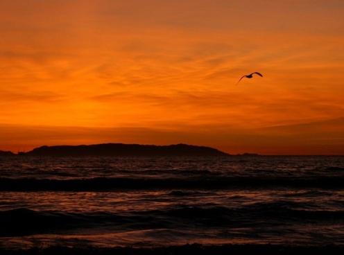sunset over catalina island